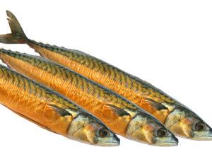 Omega-3-Fettsäuren – Fischöl besser als Pflanzenöl?