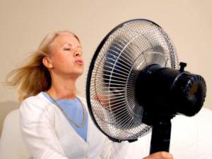 Wirksames gegen Hitzewallungen in den Wechseljahren