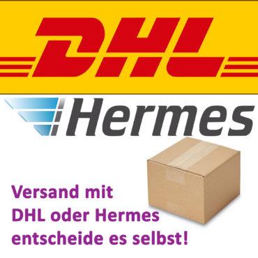 DHL Packstation oder Hermes Paketshop